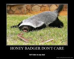 Honey Badger Memes - a meme rable year 2011 s most ridiculous internet memes slide 7