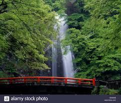 minoo waterfall minoo osaka waterfall water spray tree
