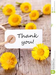 thank you flowers yellow flowers with thank you stock photo image of plank nature