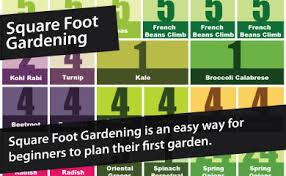 Square Foot Garden Layout Ideas Astonishing Square Foot Gardening Plans Uk 11 17 Best Ideas About