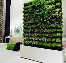 indoor herb garden in fashionable kitchen vertical herb garden diy