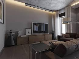 spacius 2 spacious grey living room interior design ideas