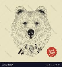 sketch of a bear face bear head front royalty free vector