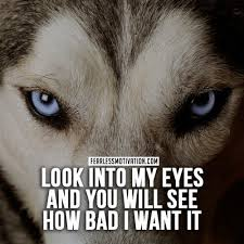 20 wolf quotes to you up wolves wolfpack quotes