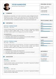 resume template professional free professional resume template