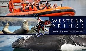 Washington wildlife tours images Western prince whale wildlife tour in friday harbor washington jpg