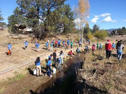 native plants of colorado project update colorado emergency watershed protection great