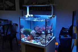 led reef aquarium lighting x aqua reef aquarium led light teaser pics captive aquatics an