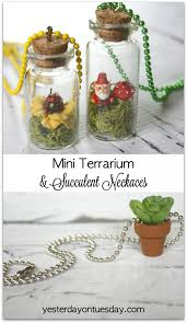 mini terrarium and succulent necklaces yesterday on tuesday