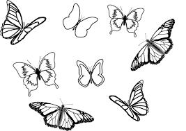 eight butterflies clip at clker com vector clip