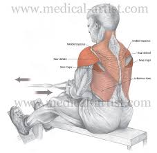 Posterior Shoulder Pain Bench Press Shoulder Pain Archives Injury Active