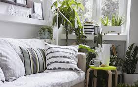 inspirational ideas for seasonal decoration