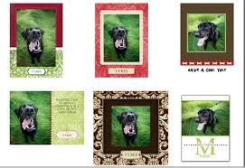 dog art today dog christmas cards