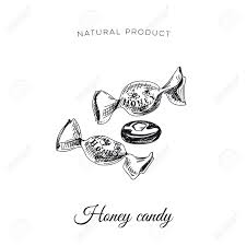 vector hand drawn honey candy illustration sketch vintage style