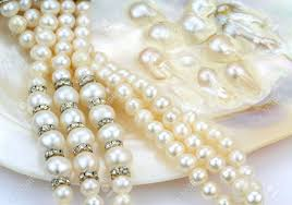 shell pearls necklace images Pearl necklace with natural pearls in a oyster shell stock photo jpg