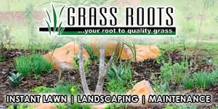 Grass Roots Landscaping by Instant Lawn In Durban Contractorfind Co Za