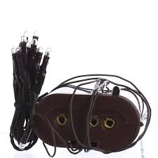 battery operated clear bulb and brown cord teeny string lights