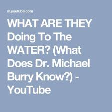 Michael Burry Vanity Fair The 25 Best Michael Burry Ideas On Pinterest Warren Buffett