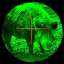 green light for hog hunting infrared night vision hog and wild boar hunting night light system