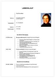 Lebenslauf Vorlage Karenz Professioneller Lebenslauf Lebenslauf