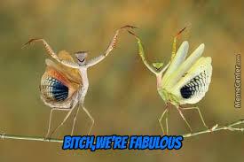 Mantis Meme - psycho mantis memes best collection of funny psycho mantis pictures