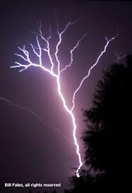 lightning tree mg 6974r tree shaped lightning bolt strike flickr