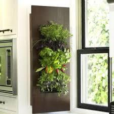 54 best living walls images on pinterest vertical gardens