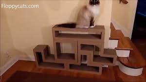 Cool Cat Scratchers