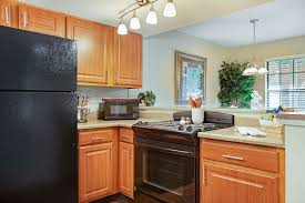 Kitchen Cabinets Birmingham Al Turtle Lake Rentals Birmingham Al Apartments Com