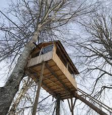 Top 10 Tree Houses Of The World  TraveLibro