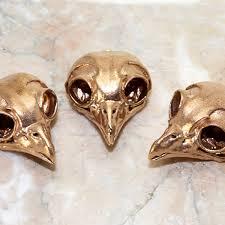 animal skull bird skull owl skull home decor science display animal skull bird skull owl skull home decor science display bronze