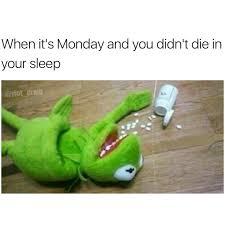 Funny Kermit Memes - monday monday monday album on imgur