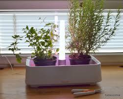 fiskars herb garden koti home pinterest herbs garden and