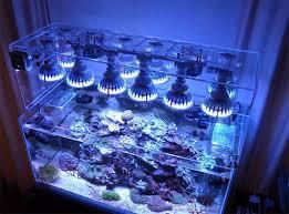 best led light for planted tank 12 best planted tank light images on pinterest fish aquariums