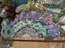 Succulent Gardens Ideas Succulent Gardens Ideas Regal Pathways With Succulent Gardens