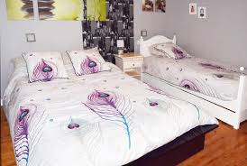 chambre hote valenciennes bed breakfast aulnoy valenciennes la pagode en solesmois 20mn