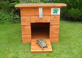 how to build a tortoise table tortoise accommodation