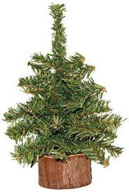 box of 4 8 mini artificial pine trees with real