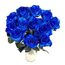 blue roses delivery blue roses delivery italy blue roses bouquet
