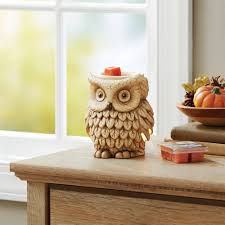 owl decorations for home owl protect baby children kids bedroom