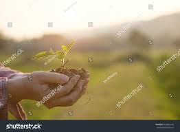 soil cultivated dirt earth ground agriculture stock photo