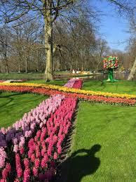 keukenhof flower gardens keukenhof tulip gardens thingstodoinamsterdam com