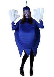 blueberry costume