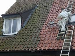 Roof Tile Paint How To Clean Your Tile Roof Diy Guide From A Roofing Company