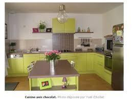 cuisine verte et marron exemple cuisine vert anis et marron