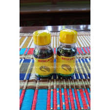 jual minyak lintah nori asli papua oleh rumah rempah manisha solo