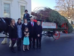 white house christmas tree 2013