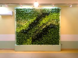 new brooklyn preschool of science gets the green wall treatment