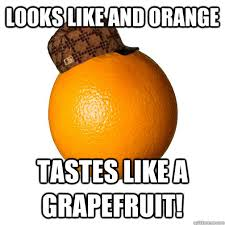 Orange Memes - looks like and orange tastes like a grapefruit scumbag rogue