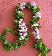 Hilo Flowers - hilo maile lei with orchid strand three long strands of wild